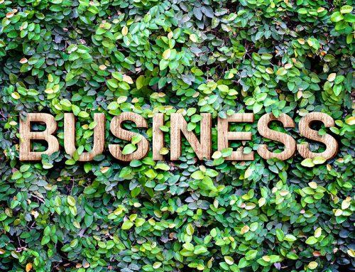Nuestra gestión medioambiental como parte estratégica de la Responsabilidad Social Corporativa